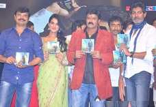 Balakrishna's Legend Audio Launch Gallery