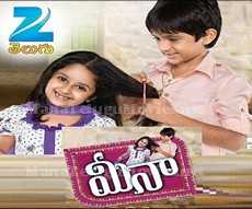 Meena New Teugu Serial - E18 - 12th April