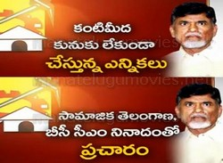 TDP Gets Ready to Face Election Heat in Seemandhra and Telangana Regions