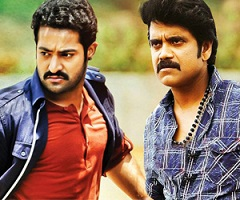 Akkineni – Nandamuri Film Is Ready To Takeoff