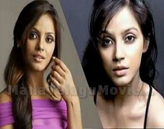 Neetu Chandra special care for item song