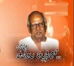 Special Focus Bapu Special Telugu Hit Songs