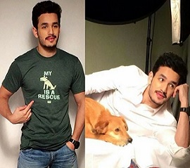 Akhil Akkineni Latest PhotoShoot Photos