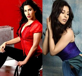 Sophie Choudry Hot Photos