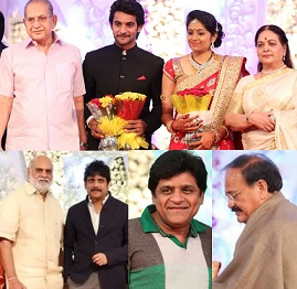 Hero Aadi Reception Photos