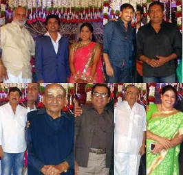 Tanikella Bharani Daughter Wedding Reception Photos