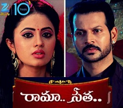 Rama Seetha Telugu Serial – E317 – 2nd Sep