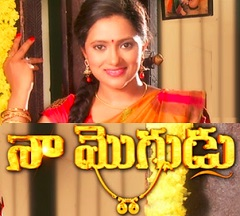 Naa Mogudu Daily Serial – E151 – 29th April