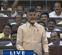 AP CM Chandrababu comments on YS Jagan Education Qualification