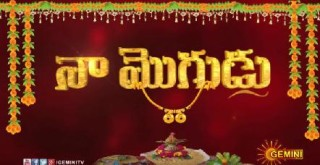 Naa Mogudu Episode – 183 (7th June  2016 )