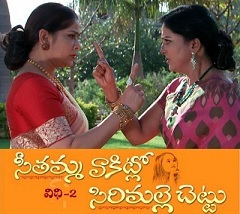 Seethamma Vakitlo Sirimalle Chettu Daily Serial – E767 – 17th Feb
