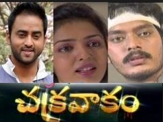 Chakravakam Telugu Serial – Episode 373- 27th July