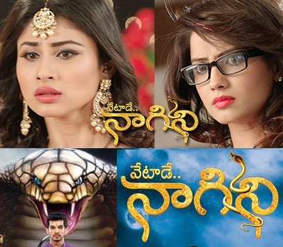 Vetade Nagini Telugu Daily Serial –  E123 – 8th Dec