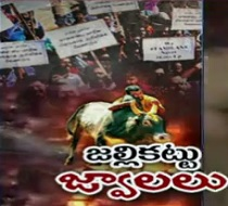 Violent turn to Jallikattu Protests