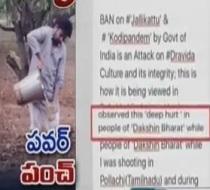 Pawan Kalyan Responds on Jallikattu Ban | Kodipandem Ban
