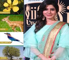 Sam's Saree Promotes Telangana State