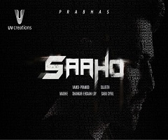 The Only Problem for Saaho