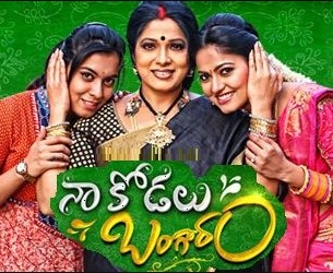 Naa Kodalu Bangaram Daily Serial -E 62 – 17th Aug