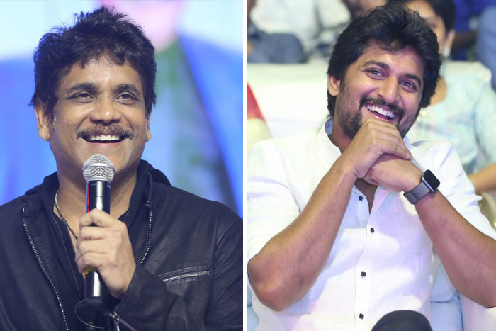 I feel like protecting Nani: Nagarjuna
