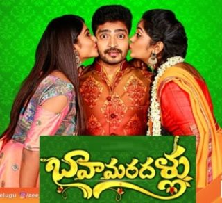 Bava Maradallu Telugu Serial – E118-19th Jan