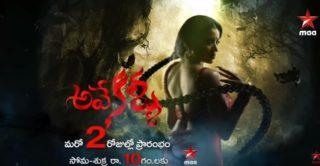 AveyKallu Telugu Serial -E52 – 22nd Jan