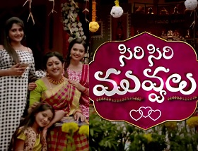 Siri Siri Muvvalu Daily Serial – E315 – 25th Jan