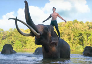 Junglee Trailer: Action Worth Watching!
