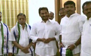 Will Dadi's entry help Jagan in polls?