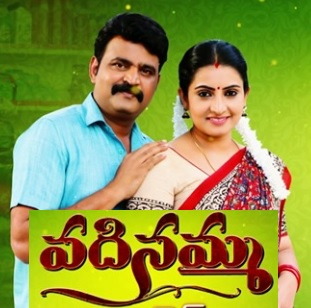 Vadinamma Daily Serial – E39 – 26th June
