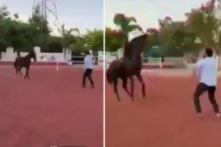 #RRR: Jr NTR Improving Horse Riding Skills
