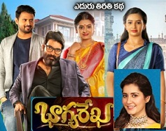 Bhagya Rekha Telugu Serial – E40 – 16th Aug