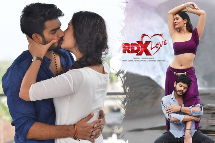 After RX100, Payal To Play Another Negative Role