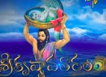 Sri Krishnavataram Daily Serial – E61 -29th Jan