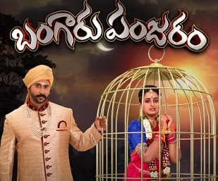 Bangaaru Panjaram Daily Serial – E154 – 11th Aug