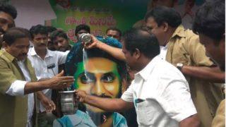 Crazy! Janasena MLA does 'Palaabhishekam' to Jagan's photo