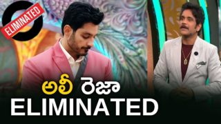 Bigg Boss 3 Telugu Finale Live Updates- Ali Reza Eliminated, who are the winner and runner up?