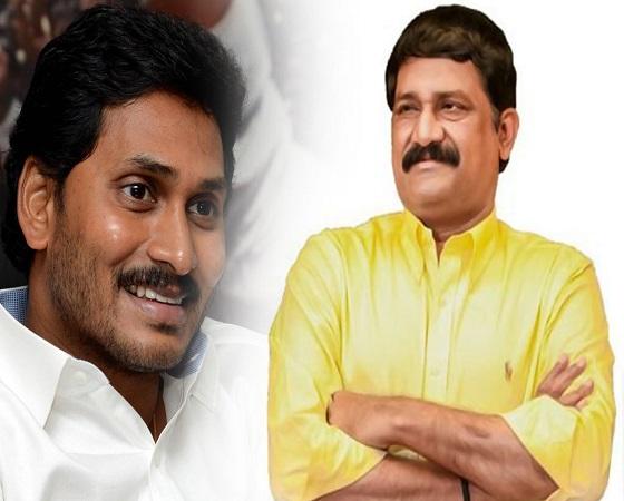 TDP Leaders Welcoming Jagan's Move, But Not Naidu