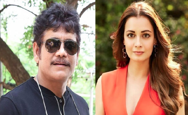 Another Bollywood Actress For Nag's Wild Dog