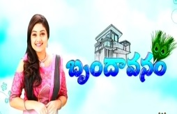 Brindavanam Daily Serial – E37 – 11th Aug