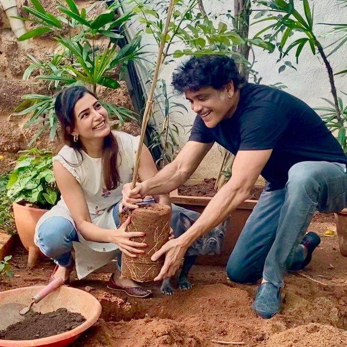 Samantha : I've accepted #HaraHaiTohBharaHai #GreenindiaChallenge 🍃 from Nag mama 💚